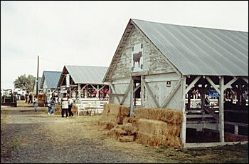 Harney County Fair